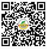 江苏交通广播网拼图闯关抽奖送1-99元微信红包奖励